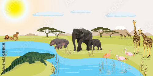 African landscape vector illustration