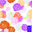 Seamless Pattern Dahlia flowers 1 - 255827311