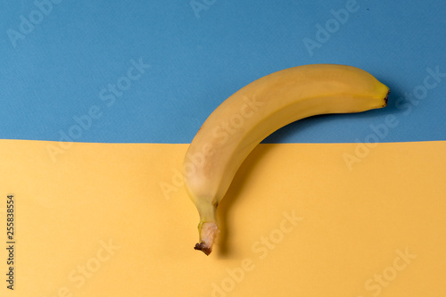 Minimalism style. Yellow ripe banana fruit over yellow and blue background. - 255838554