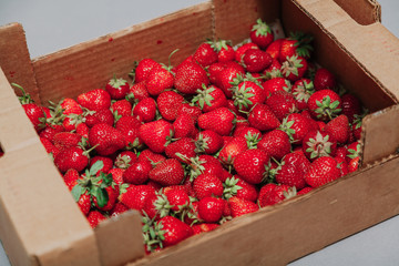 Red ripe strawberries in cardboard box on white background