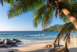 Exotic tropical beach with palms and blue sea at sunset on Seychelles Paradise island.