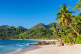 Tropical beach at sunset with coco palms in Seychelles. Summer vacation and travel concept.   - 255881986