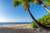 Tropical beach at sunset with coco palms in Seychelles. Summer vacation and travel concept.