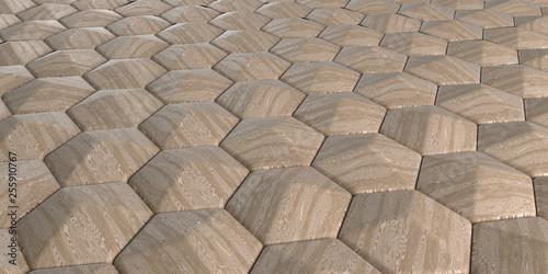 3D Geometric Abstract Hexagonal Wallpaper Background - 255910767