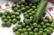 Quadro Pisum sativum ft01_2637 Piselli Erbse Peas Pois cultivé Grah