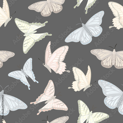 seamless pattern with butterflies - 255929903