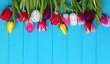 tulips on blue wood