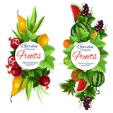 Garden fruits, grape with leaves isolated banner