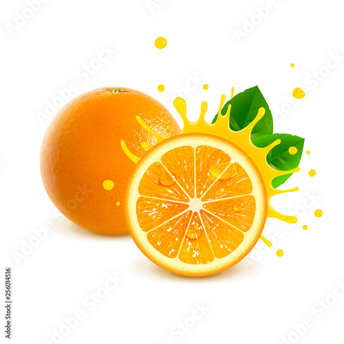Juicy Whole Orange and Half Orange - 256014516