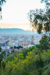 Panorama of the city of Malaga - 256041331