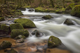 River flowing through woodland in winter at Golitha Falls, Cornwall, UK