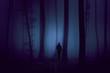 Leinwanddruck Bild - Man walks in dark violet colored foggy forest