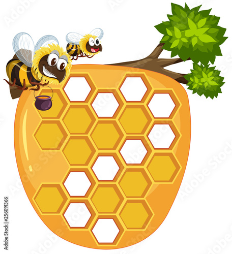 Isolated beehive on white background