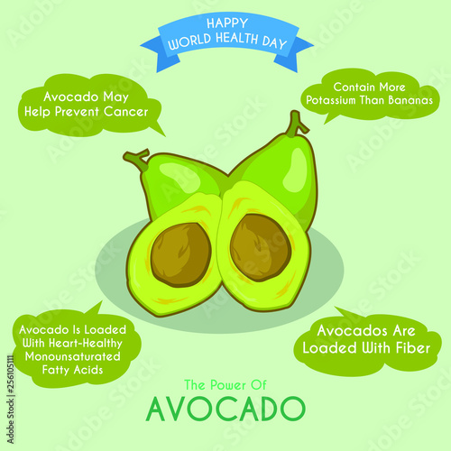 Illustration of avocado and its benefits - 256105111