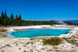 Elk near deep blue hot springs pool