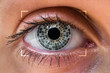 Eye scanning and recognition - biometric identification concept