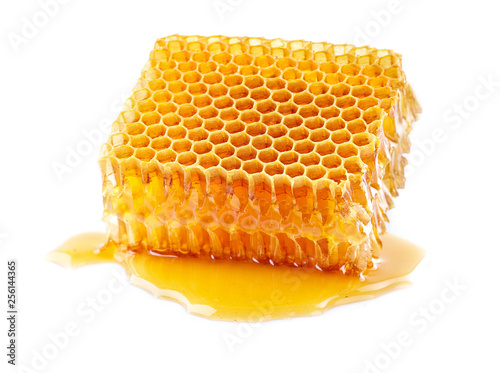 honeycomb isolated on white © Dionisvera
