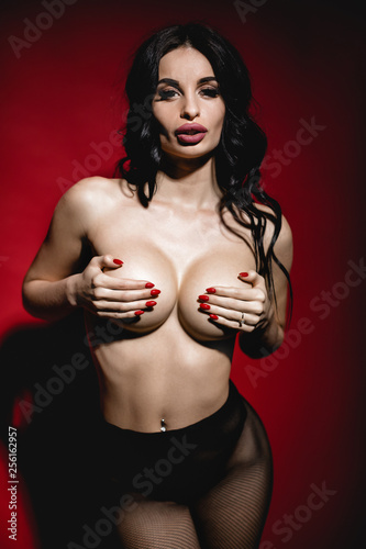 Leinwandbild Motiv sexy beautiful brunette woman with big breasts posing nude in black stockings on red background in studio.
