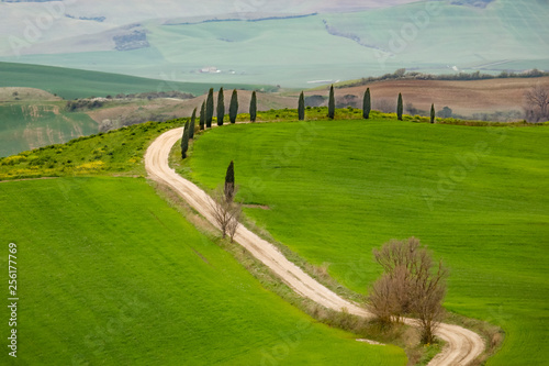 Desk of free space for your decoration and spring landscape of tuscany  - 256177769