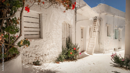 Small narrow alley with white painted walls and red flowers in the foreground and on the ground on the island Kythira in Greece
