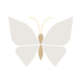 butterfly flat illustration