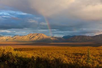 Scenic Autumn Landscape in Denali National Park Alaska