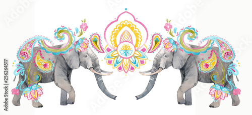 Watercolor elephant illustration