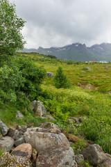Beautiful scandinavian landscape with meadows, mountains and village. Lofoten islands, Norway. © Konstantin Aksenov