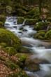 Wasserfall mit Steinen voller Moos - 256424911