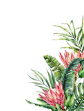 Watercolor tropical flowers and palm leaves card. Hand painted protea and leaves isolated on white background. Nature botanical illustration for design, print. Realistic delicate plant. - 256427746