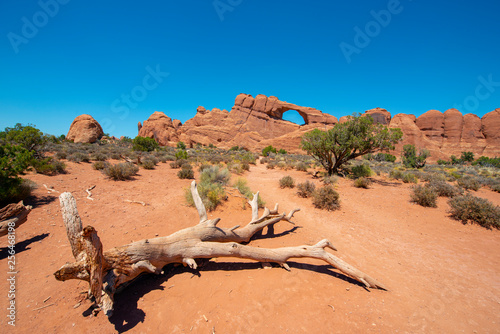 Skyline arch in Arches National Park, Moab, Utah, USA.