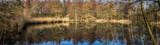 Panorama Teich im Wald beim Kloster Loccum 1