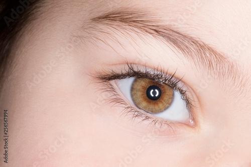 Occhio di bimbo