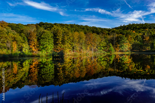 Foto Murales Kingston, New York, USA Natural fall and autumn colors on a lake.