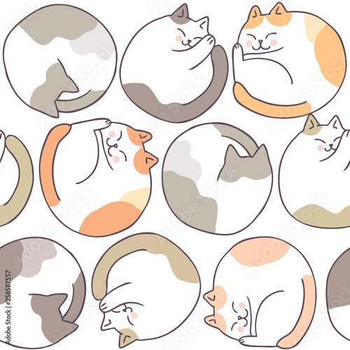 fototapeta na ścianę Cartoon cute cat sleeping seamless pattern vector.