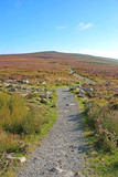 Path on the Blorenge, Brecon Beacons, Wales