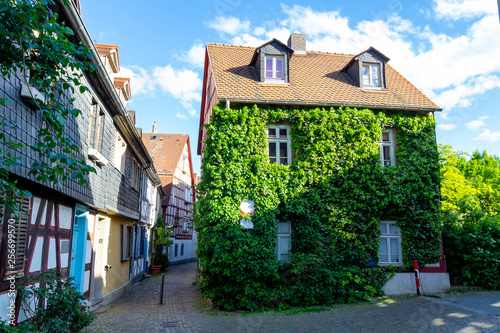 Leinwanddruck Bild Green house in a residential street