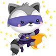 Raccoon Superhero