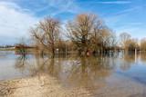 Hochwasser an der Donau in Straubing