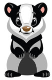 cartoon badger standing on two legs .Front view . Isolated vector illustration for baby and little kid