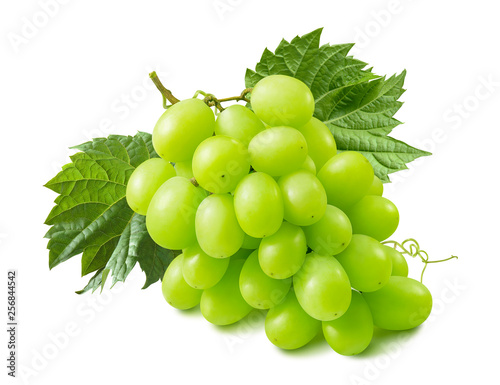 Green grapes with leaves isolated on white background © kovaleva_ka