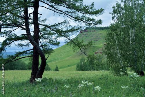 Landscape mountain Karatag Sharypovo district Krasnoyarsk region, Russia - 256968932