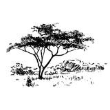 Hand drawn African safari nature landscape black on white background