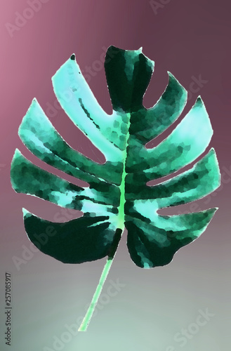 Monstera abstract illustration © zetat