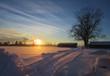 canvas print picture - Wintermorgen mit Sonnenschein