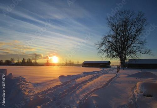 canvas print picture Wintermorgen mit Sonnenschein
