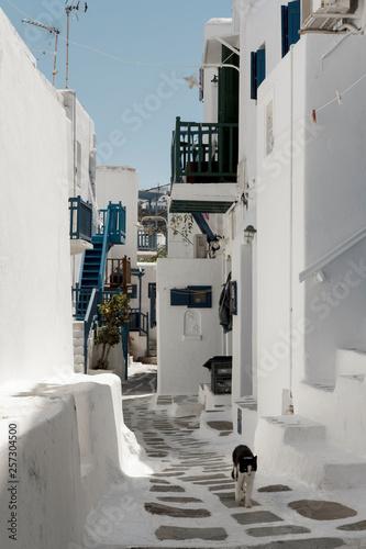 street  white of Mikonos © Albert