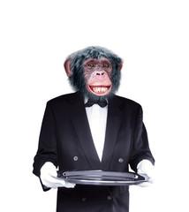 chimpanzé, cuisinier, serveur, drôle, chef, cook, aliment, garçon, isolé, maitre d'hôtel, cuisiner, blanc, uniforme, serveur, professionnel, boulot, cuisine, personne, cale, métiers, gens, bistro, tra