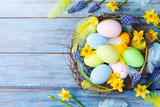 Easter background with colorful eggs in nest, feather and spring flowers top view. Holiday card or banner.
