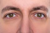 Nahaufnahme, Augen und Augenbrauen eines Mannes, braun
